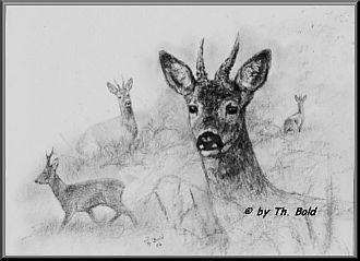 Weihnachtsgrüße Jagdlich.Jägersprüche